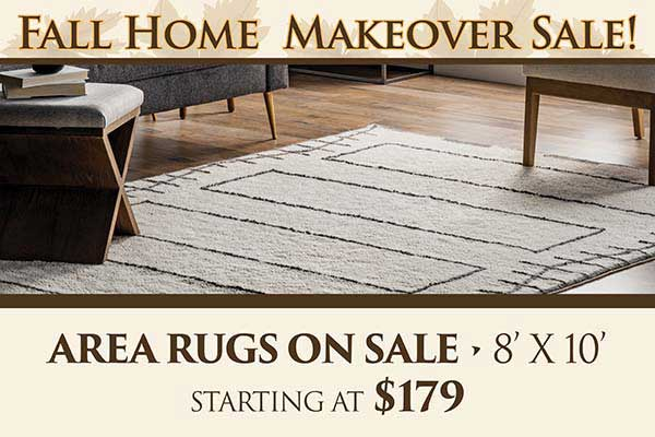 8' x 10' Area Rugs starting at $179 during our sale