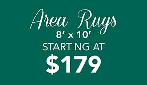 Home for the Holidays Sale going on now only at Abbey Carpet & Floor of Hawthorne! 8' x 10' area rugs on sale starting at only $179